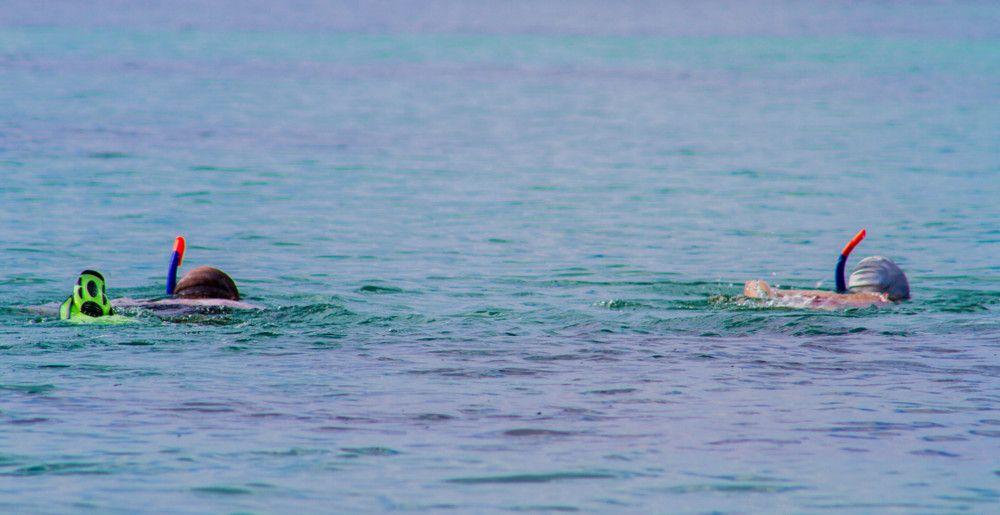 snorkeling in kenya