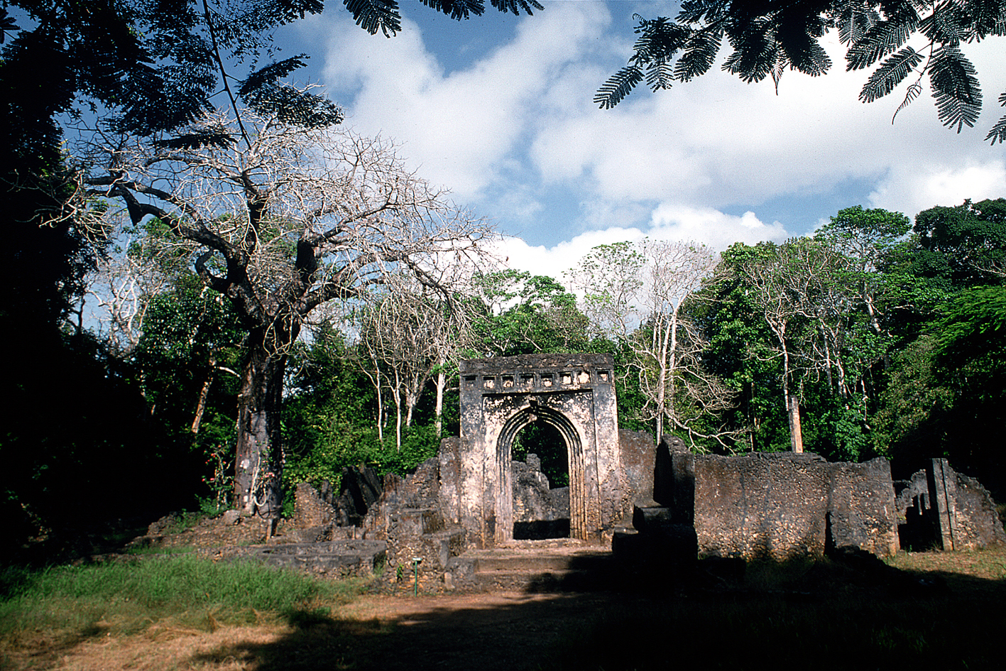Discover the Ancient ruins of Gede at sunrise-Hemingways Watamu