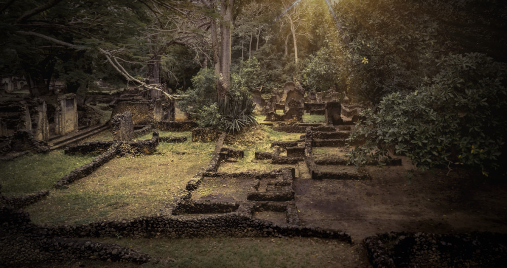 Explore Gede Ruins in Watamu