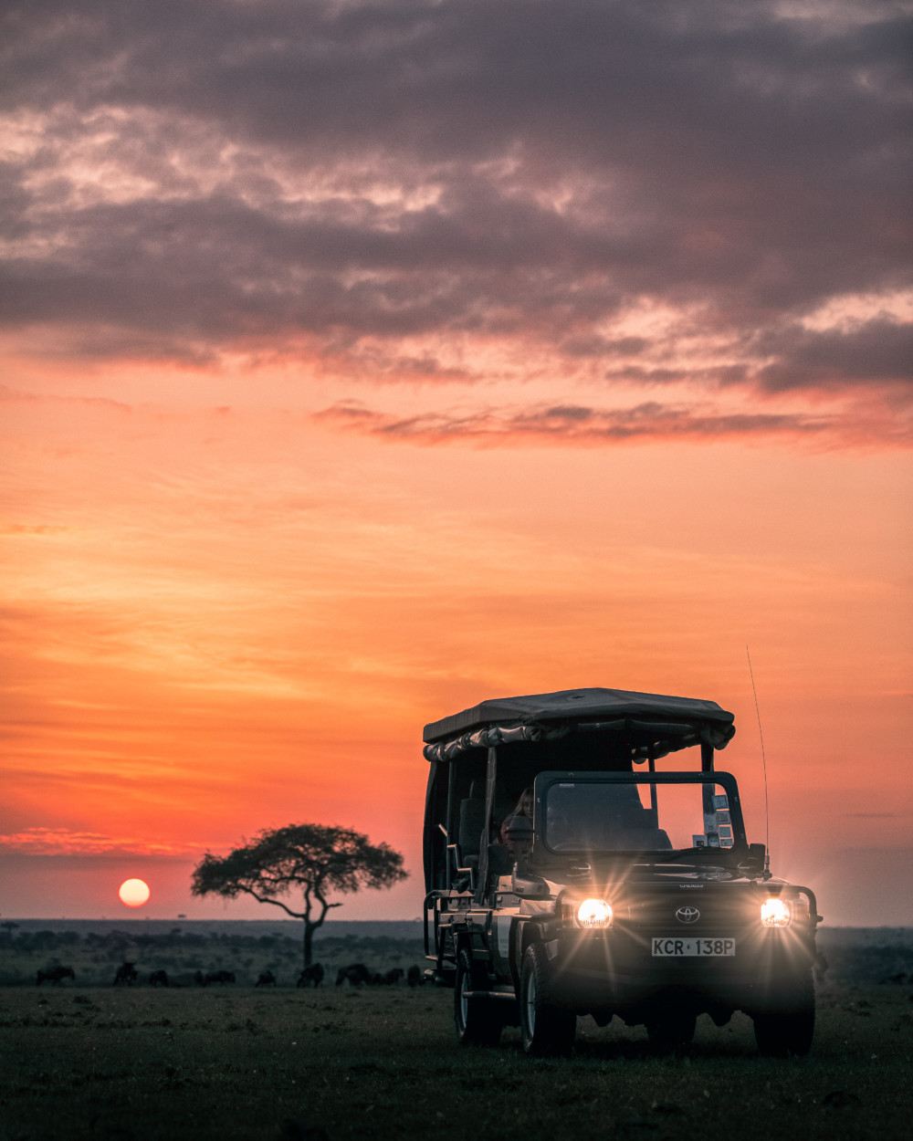 Best Masai Mara Camps for Safari in Kenya